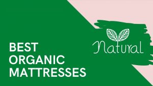 Best Organic Mattresses 2021 – Natural Mattresses to Sleep